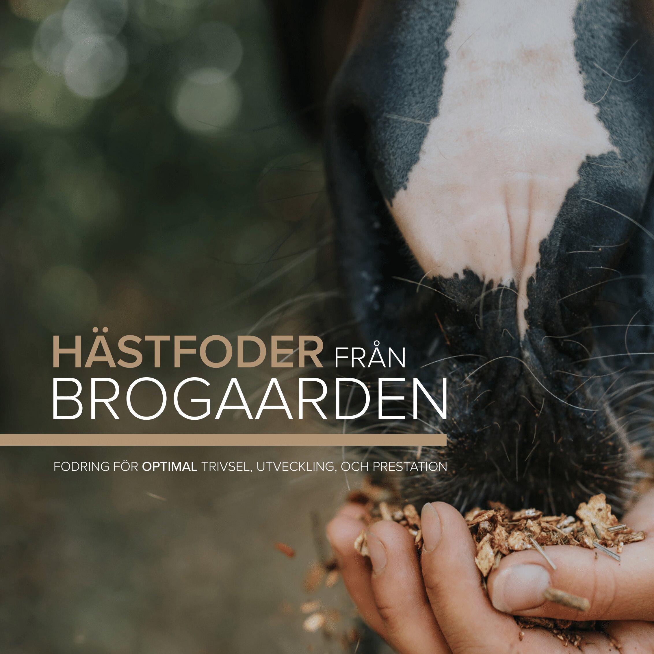 https://hogstaridsport.jetshop.se/pub_docs/files/Foder-fran-Brogaarden.png