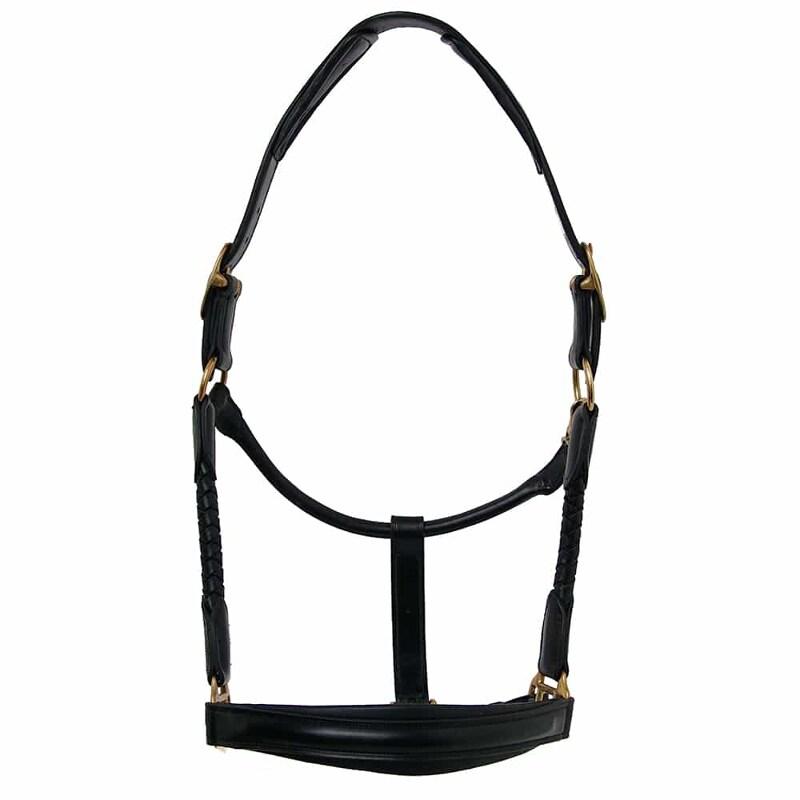 Leather halter Riva - Blac/Brass