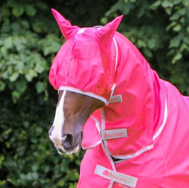 Freedom Fly Mask - Pink