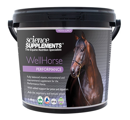 Wellhorse Performace - 1,4 kg