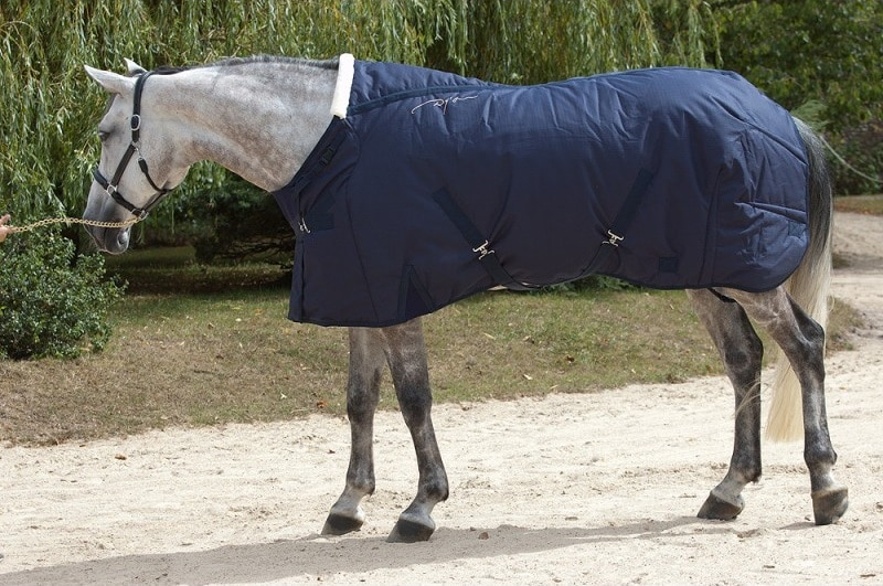 Stable rug 350 gr - Navy