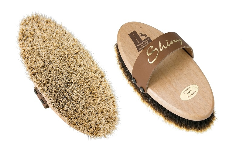 Shiny grooming brush
