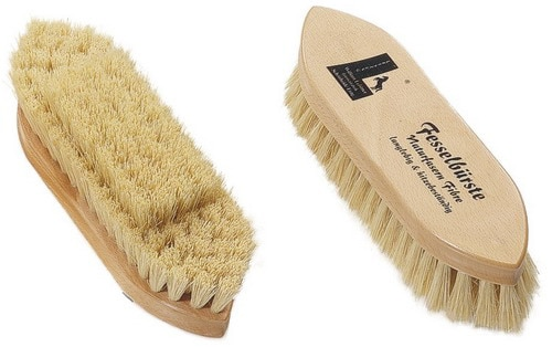 Brush for pastern