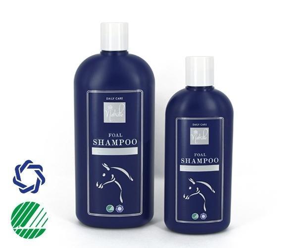 Foal Shampoo