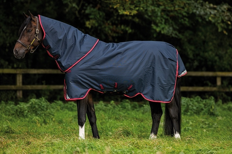 Amigo Bravo 12 Plus Turnout medium-horseware