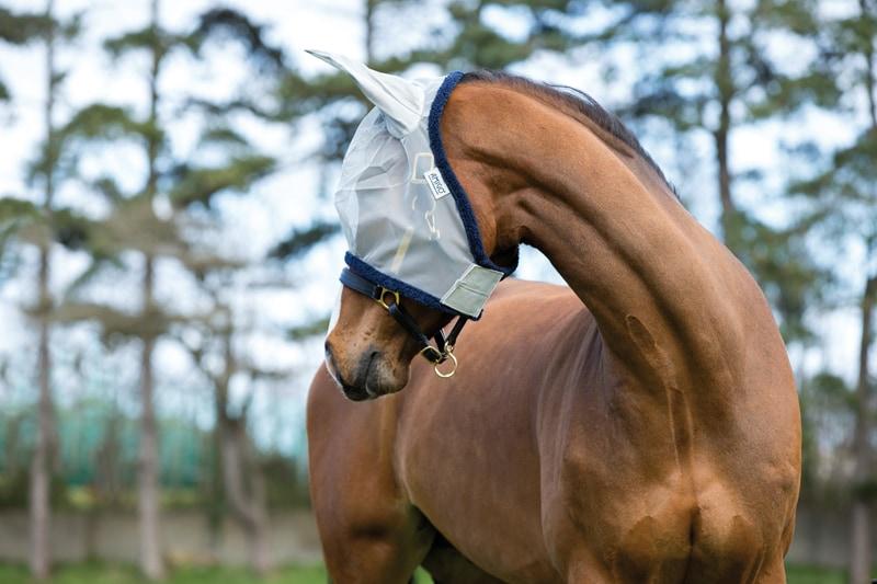 Amigo Fine Mesh Fly Mask