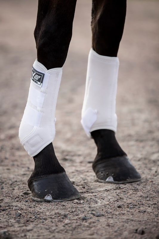 Dressage boots Ventex 22 - Black