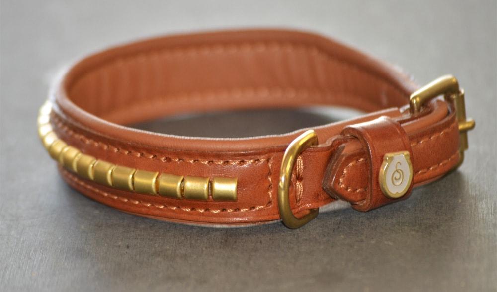 Dog Collar - clinchers