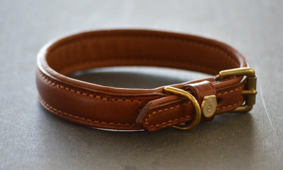 Dog-collar in leather - Havanna