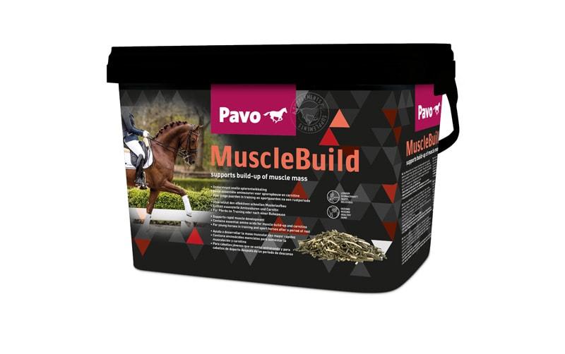 Pavo Muscle Build 3 kg. Hogsta Foderbutik.