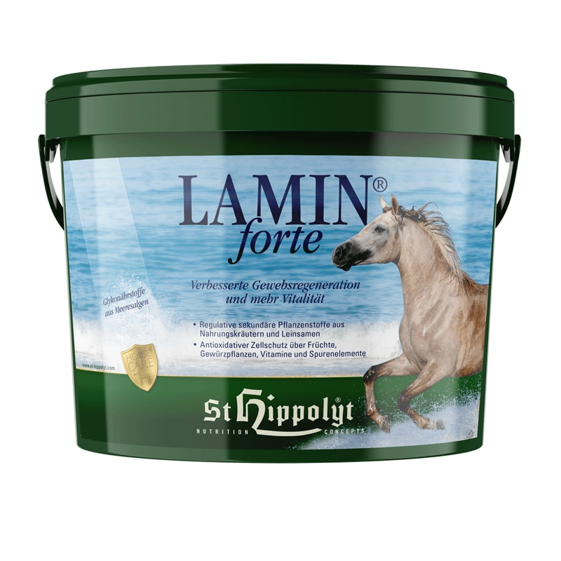 Lamin Forte 3 kg från St Hippolyt. Hogsta Ridsport.