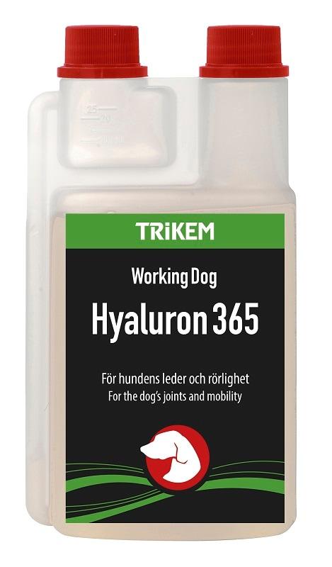 Hyaluron-365-hund-trikem