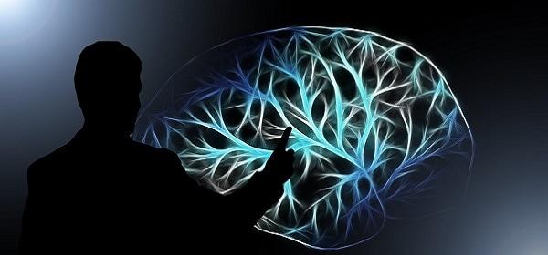 För hjärnans skull