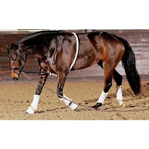 Lunging Aid Soft