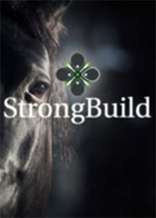 equvici-strong-bulid